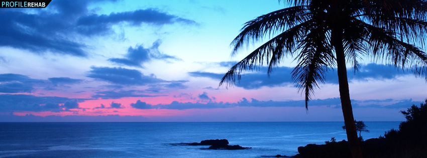 Beautiful Sunset and Palm Tree Facebook Cover