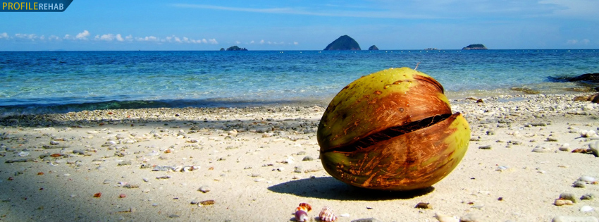 Pulau Ocean Timeline Cover with Coconut
