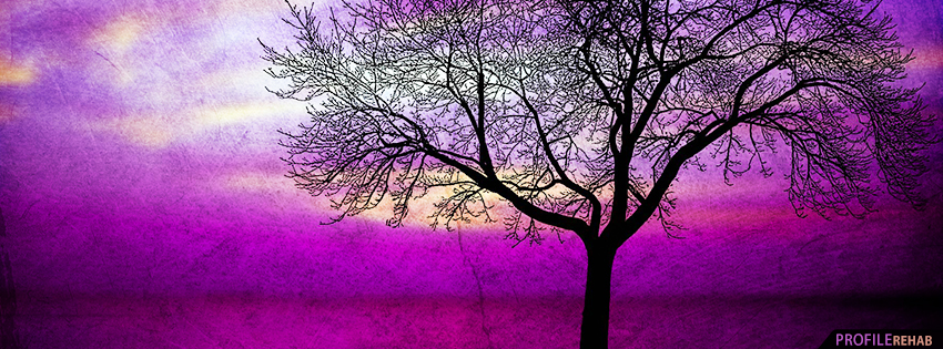 Purple Tree and Sky Facebook Cover