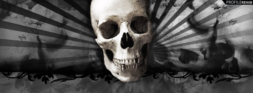 Grey & Black Skull Cover for Facebook Timeline - Pictures of Skulls - Cool Skull Pics
