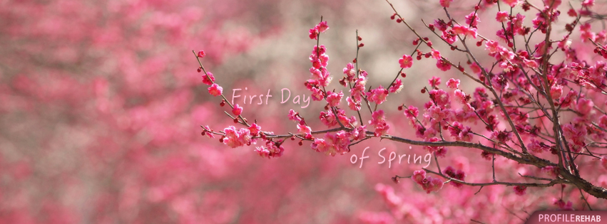 Spring Accommodation Facebook Covers: Free Spring Facebook Covers For Timeline, Pretty Spring