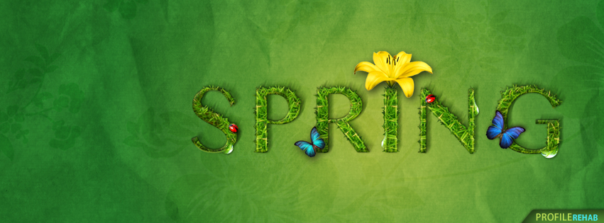 Spring Butterfly Facebook Cover