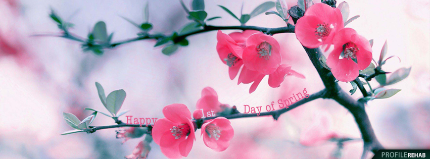 Free Spring Facebook Covers For Timeline Pretty Spring Season