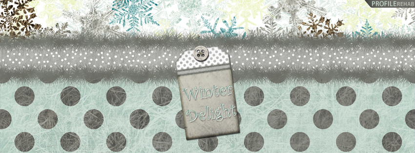 Winter Delight Facebook Cover for Timeline