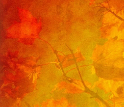 Red Fall Leaves Myspace Layout - Autumn Leaves Theme - Red Fall Design