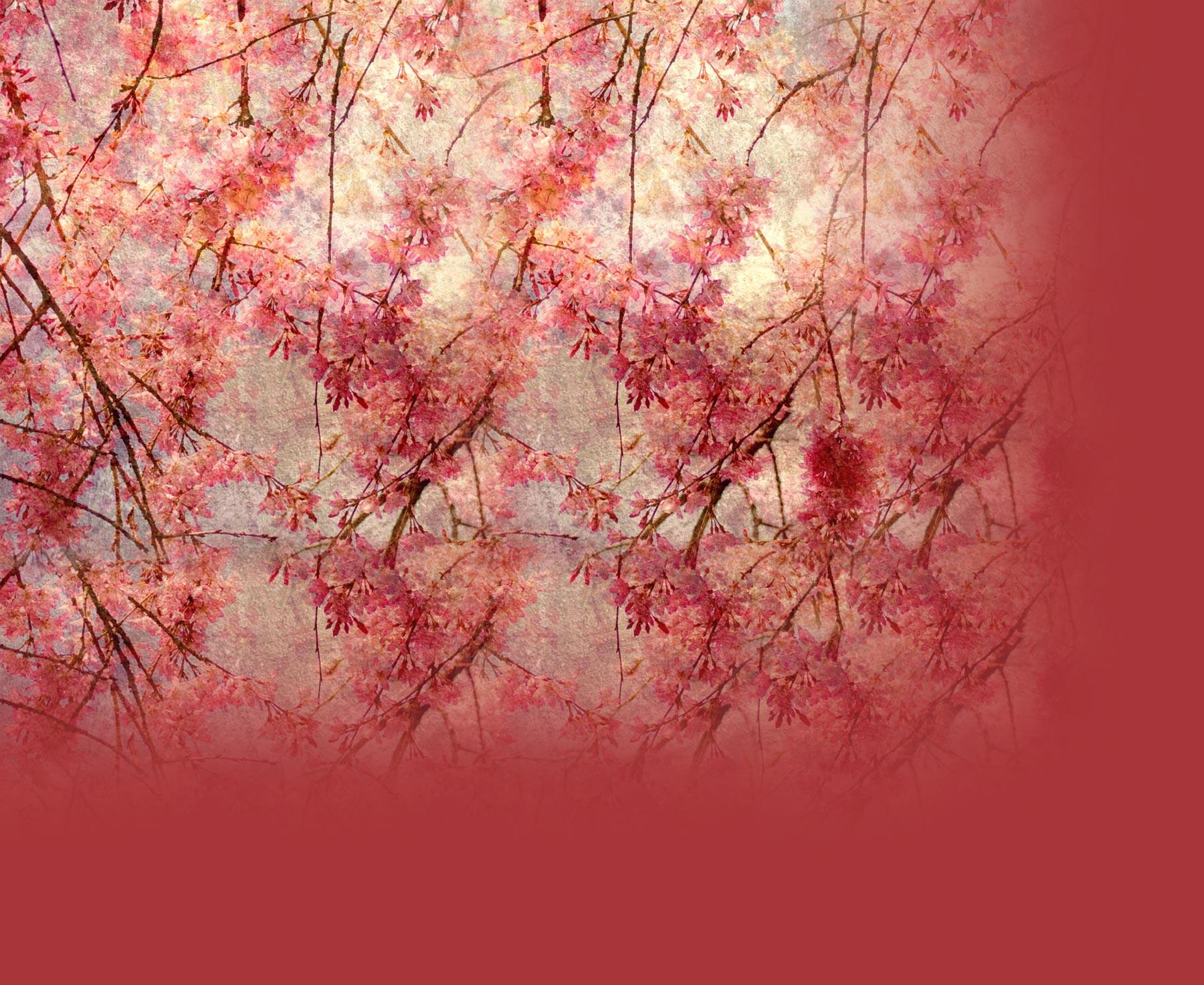 Twitter backgrounds floral vintage