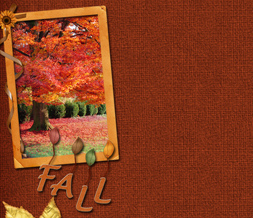 Girly Autumn Twitter Background - Fall Tree Layout for Twitter