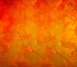 Autumn Tree Default Layout-Fall Default Theme for Myspace