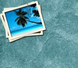 Free Scenic Twitter Background - Cute Scenic Theme for Twitter