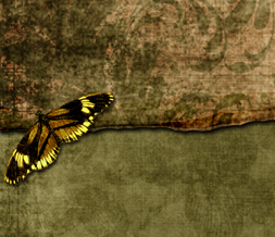 Earth Tones Butterfly Twitter Background - Yellow Butterfly Layout for Twitter Preview