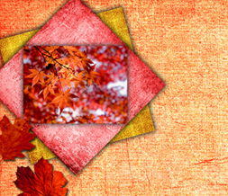 Pretty Fall Leaves Twitter Background - Orange Leaves Design for Twitter Preview