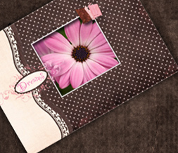 Pink Daisy Twitter Background - Brown & Pink Twitter Theme