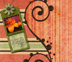 Orange & Green Enjoying Life Quote Twitter Background