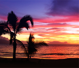 Beautiful Maui Sunset Twitter Background - Sunset in Maui Theme for Twitter