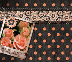 Peach Roses Background for Twitter with Polkadot Quote