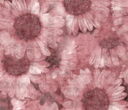 Pink Sunflowers Twitter Background - Pink Sunflowers Theme for Twitter