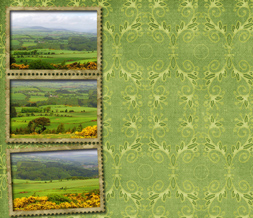 Green Meadow Twitter Background - Scenic Vintage Layout for Twitter
